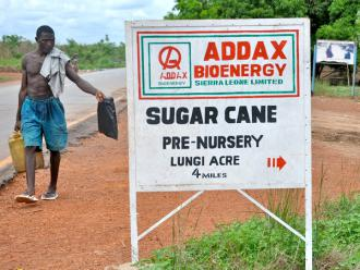 A Swiss-based energy company raised sugar cane for biofuel in Sierra Leone
