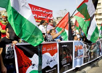 Protesters gathered in Tahrir Square carry Palestinian flags in a show of solidarity  (Hossam el-Hamalawy)