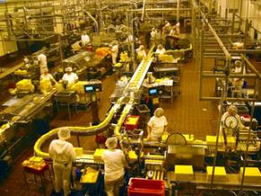Workers at a cheese factory in Oregon