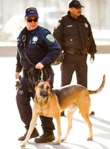 San Francisco police on the streets