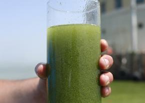 Contaminated water in Toledo, Ohio