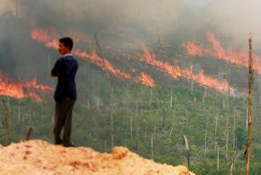 Devastating wildfires rage in Indonesia