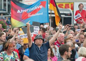 Marching with the far-right Alternative for Germany