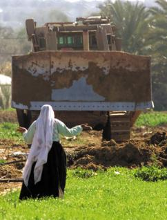 Israel uses bulldozers to demolish Palestinian homes and orchards