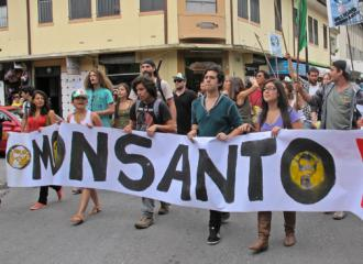 Marching against Monsanto in San José, Costa Rica (Kathleen Brown | SW)