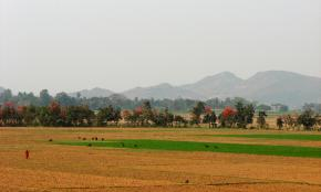 The countryside in Orissa