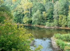 The Elk River in West Virginia