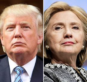 Your democratic options for the next President of the United States