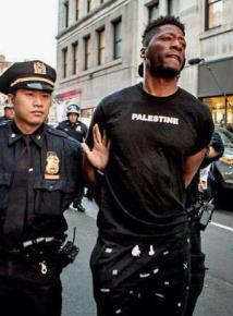 Arrested while showing support for the Palestine struggle