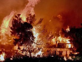 Wildfires tear through the outskirts of Athens
